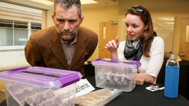 Chuck Maillet, director general of regional operations for ACOA, takes a look at some crickets from Joy Hillier's Midgard Insect Farm. (Megan Mahon/Communications Nova Scotia)