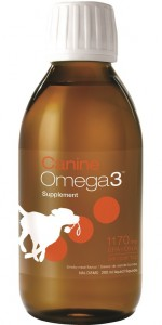 CanineOmega3 oil by NutraSea provides a concentrated dose of EPA and DHA fatty acids to support health.